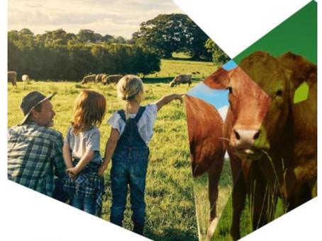 Cibo Labs contributing to the Australian Beef Sustainability Framework