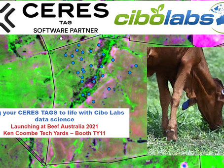 Bringing CERES TAGs to life with Cibo Labs data science