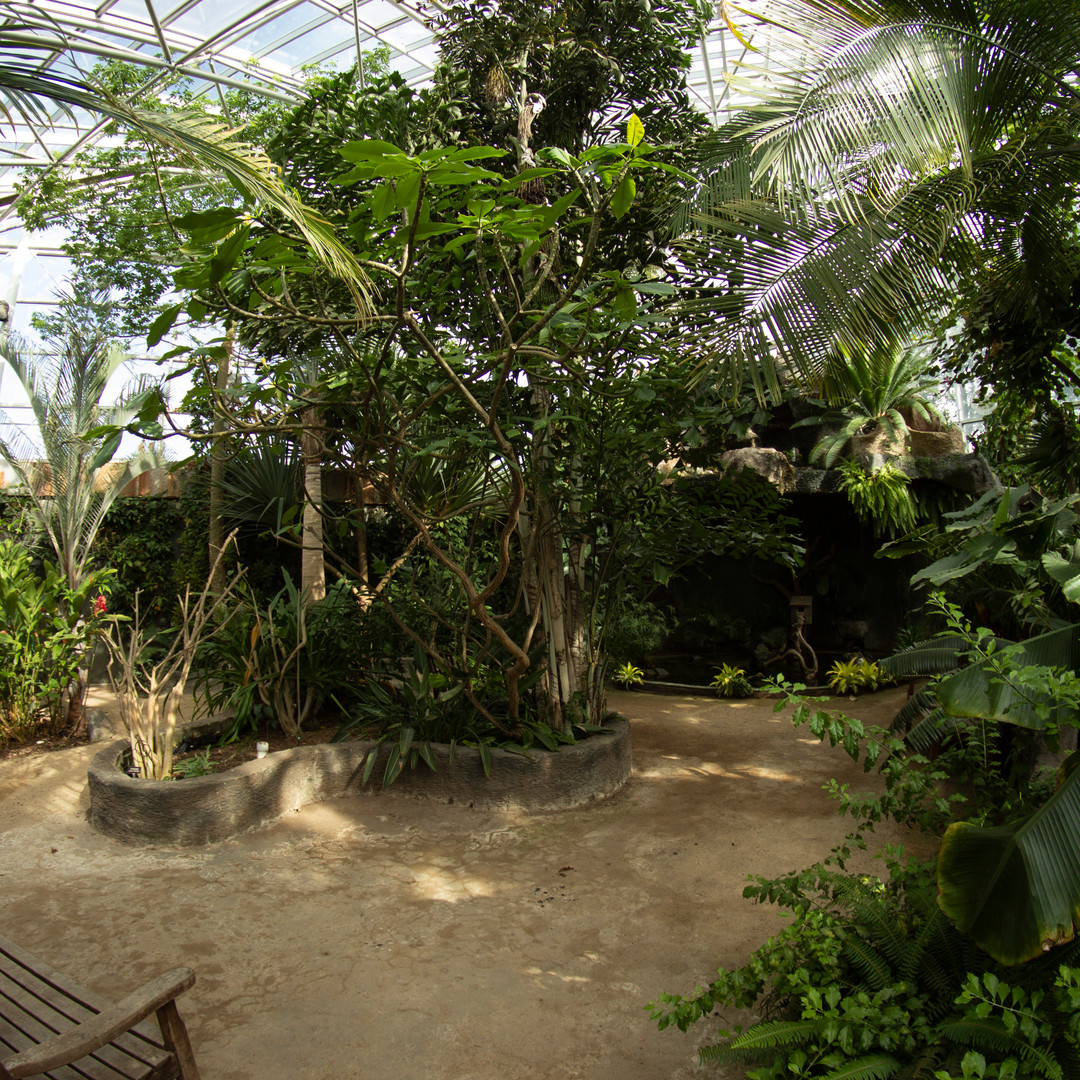 Tropical Conservatory