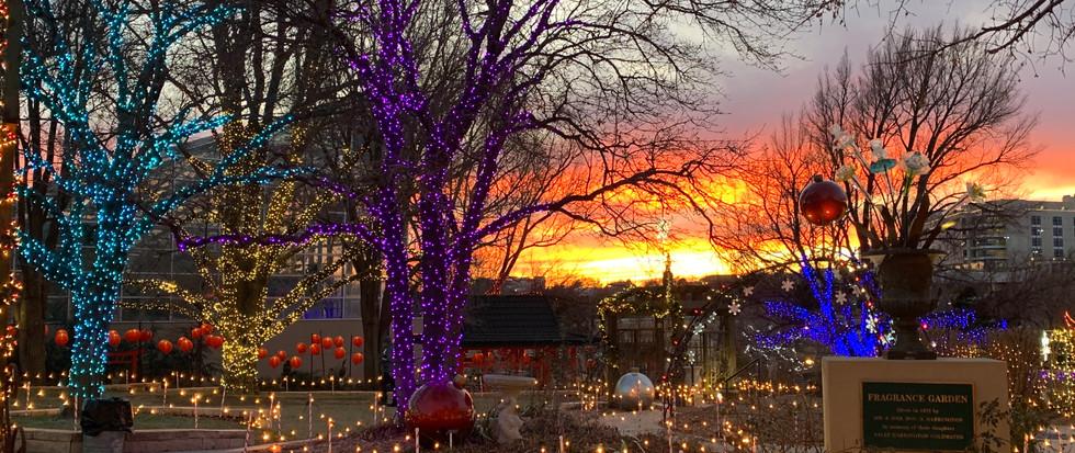 ABG Christmas in the Gardens