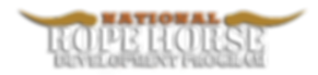 NRHDPlogo copy2.png