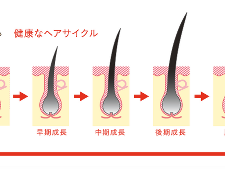 抜け毛のサイン!!