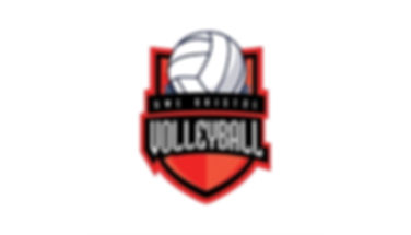 Volleyball club