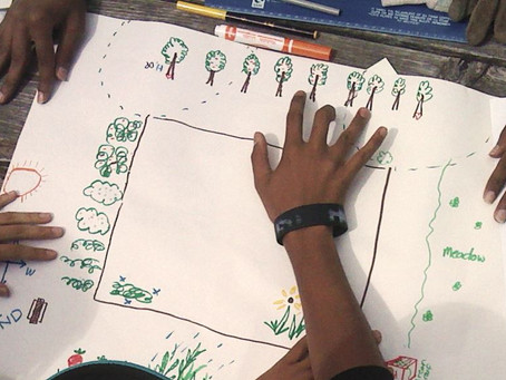 Introduction to Permaculture - Workshops