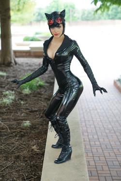 catwomanprint