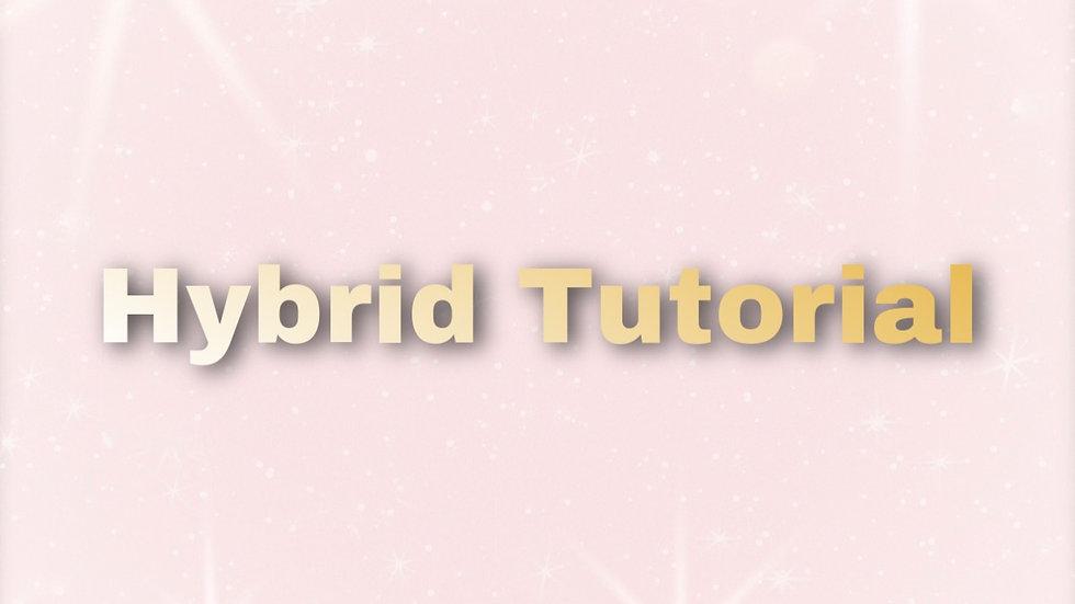 Hybrid Tutorial