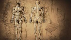 Bagaimanakah Keregangan Otot Rendah (Low Muscle Tone) Mempengaruhi Fokus Di Kalangan Kanak-Kanak