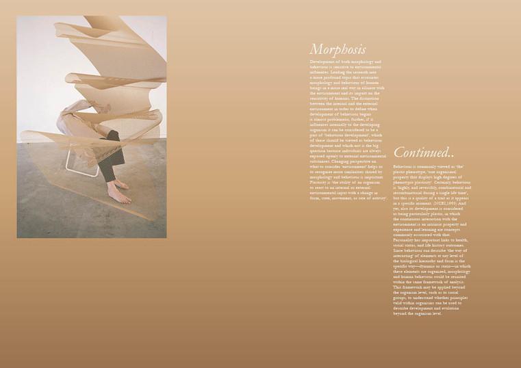 metamorphosis_thebook10.jpg