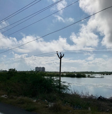 Somewhere near Pondicherry 2016