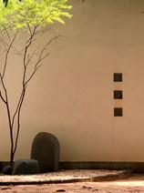 Auroville 2016