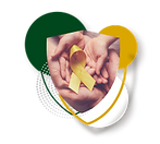 1_seguro_cancer.png