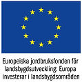 EU-flagga+Europeiska+jordbruksfonden+fä