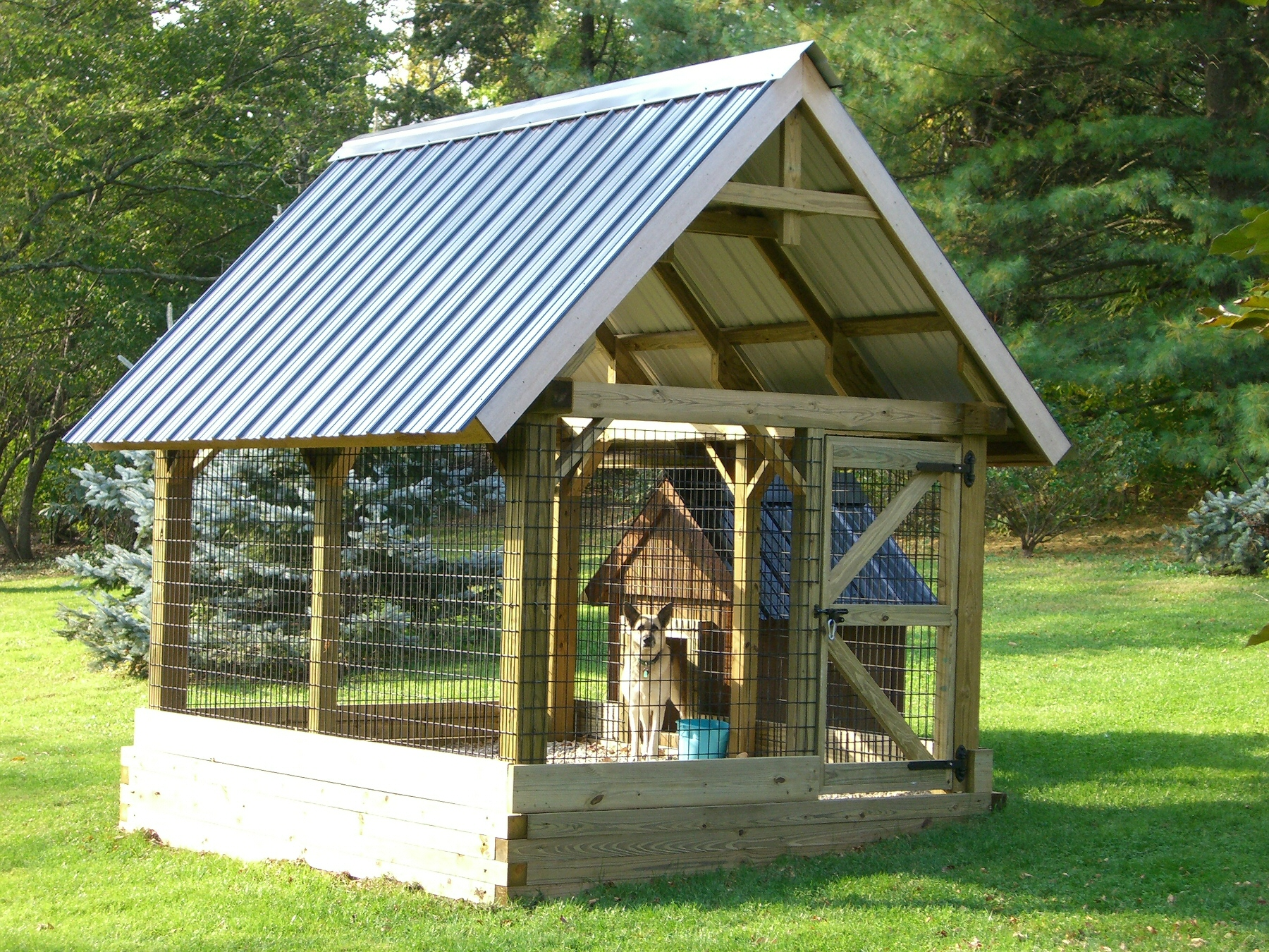 8' x 12' Post and Beam Dog Kennel