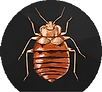 pest control 2.png