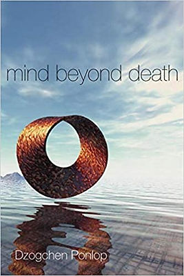 Mind Beyond Death.jpg