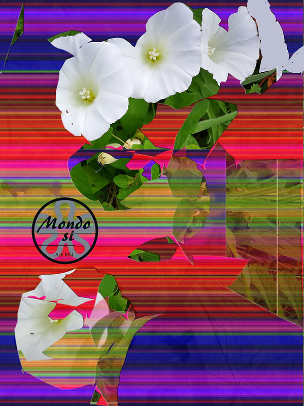 campanelle bianche con effetto 2 ok .jpg