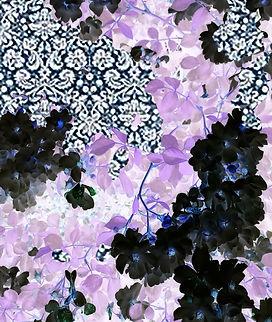 fiori neri e viola finiti per america JP