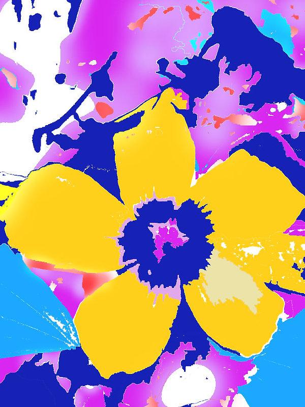Ibisco 1 Elaborato 3.jpg