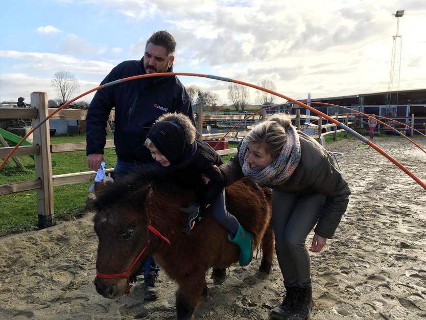 Foxtrot Pony Project! Nieuwe sessies vanaf 17 december. VOLZET! Werken aan schoolrijpheid en karakte