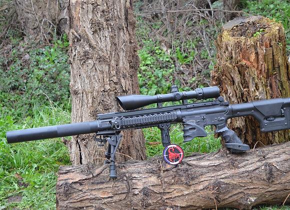 Bw15 DMR custom