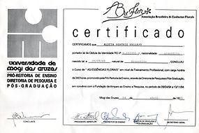 Certificado Universidade Mogi das Cruzes
