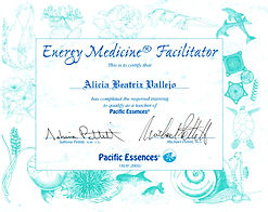 Energy Medicine Facilitator Pacific essences
