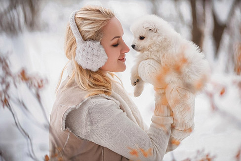 фотосессмия с щенками хаски