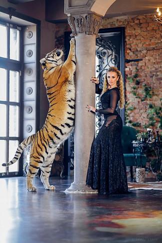 фотосессия с тигром