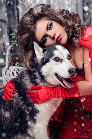 фотосессия с щенками хаски