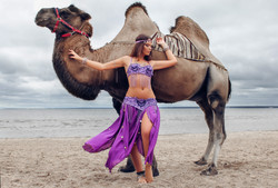Восточная красавица и верблюд