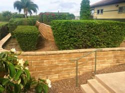Hedge & Tree Care