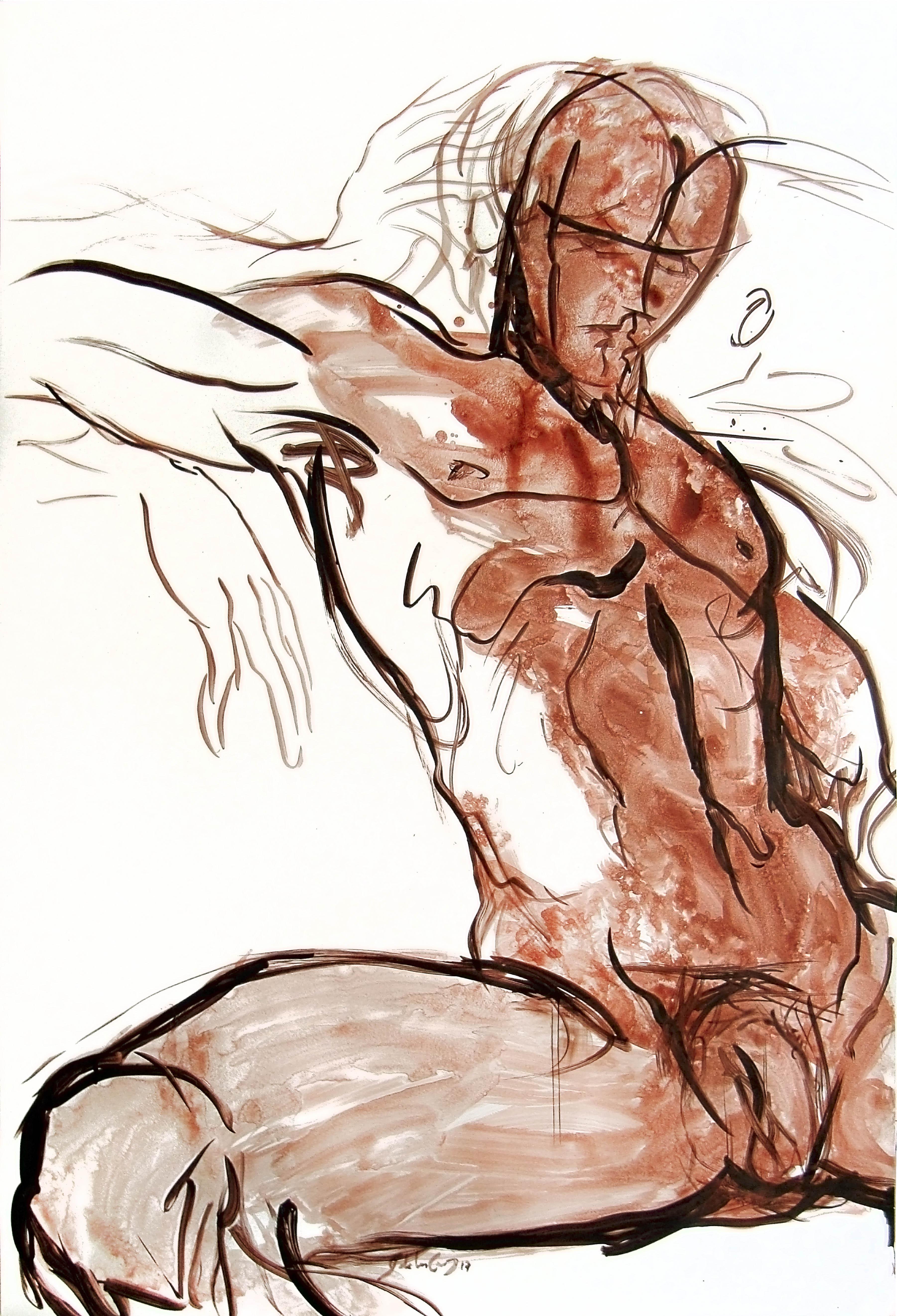 Estudios anatómicos XIV