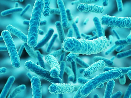 What is your microbiome?