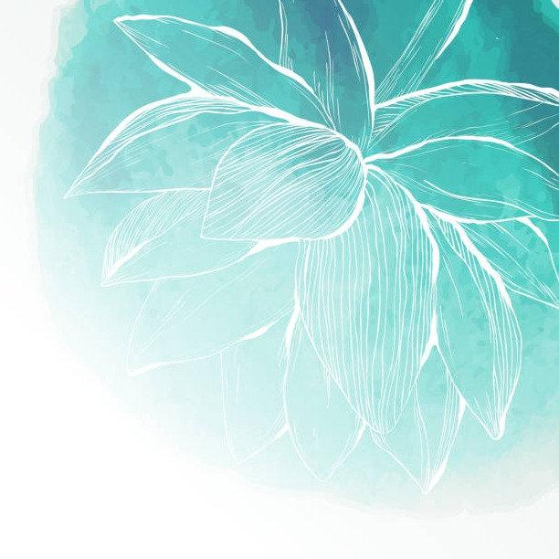 lotus 1_edited.jpg