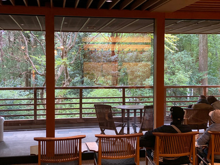 Autumn Japan Trip   11 Days in Japan   Day 3-4 Hakone
