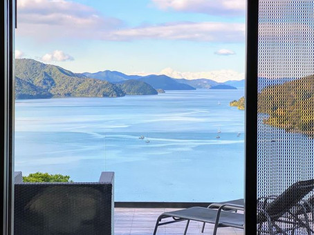 Coronavirus: Kiwis share views from their windows