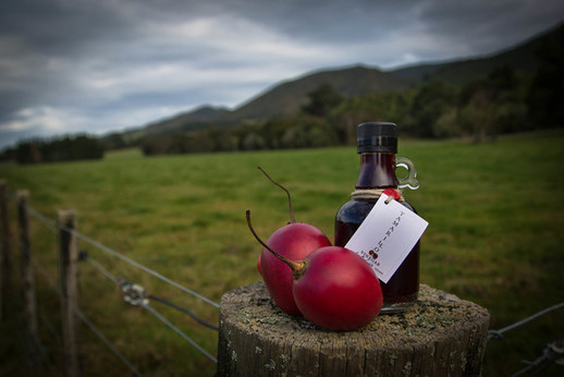 Tamarillo Vinegar