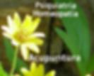 Psiquiatria-Homeopatia-Acupuntura