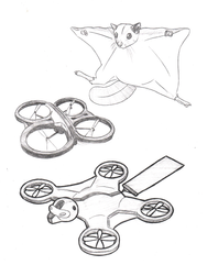 Squirrel Drone [A1R-Nu4]