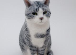 Cat's ISSUEとサバ美さま