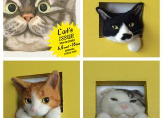 Cat's ISSUE POP-UP STORE @OSAKA