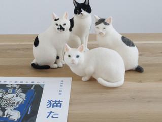 猪熊弦一郎展『猫たち』