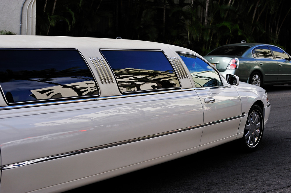 limousine solenum