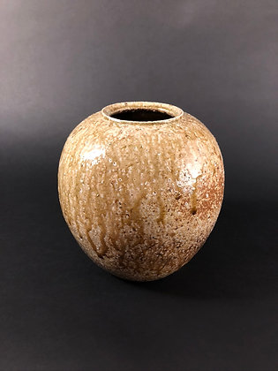 Shigaraki Vase [TI-V 147]