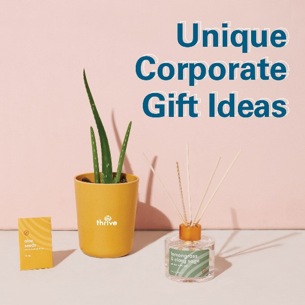 Aloe plant with text Unique Corporate Gift Ideas