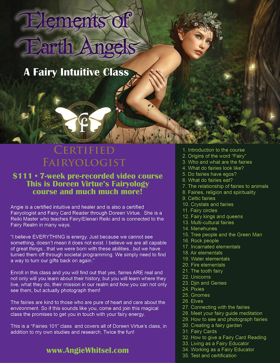 Fairy Intuitive Class Outline for AngieW