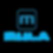 Mula_Company_Logo_1.png