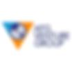 AFG Venture Group.png