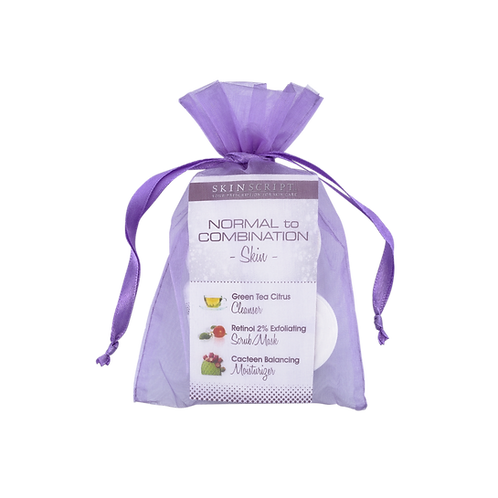 Facial in a Bag Normal/Combination Skin Mini Kit