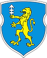 800px-Coat_of_Arms_of_Słonim,_Belarus.sv